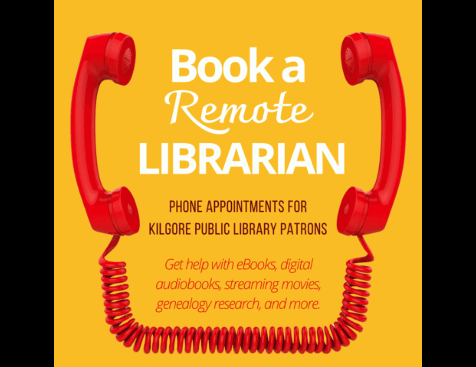 Book a Remote Librarian