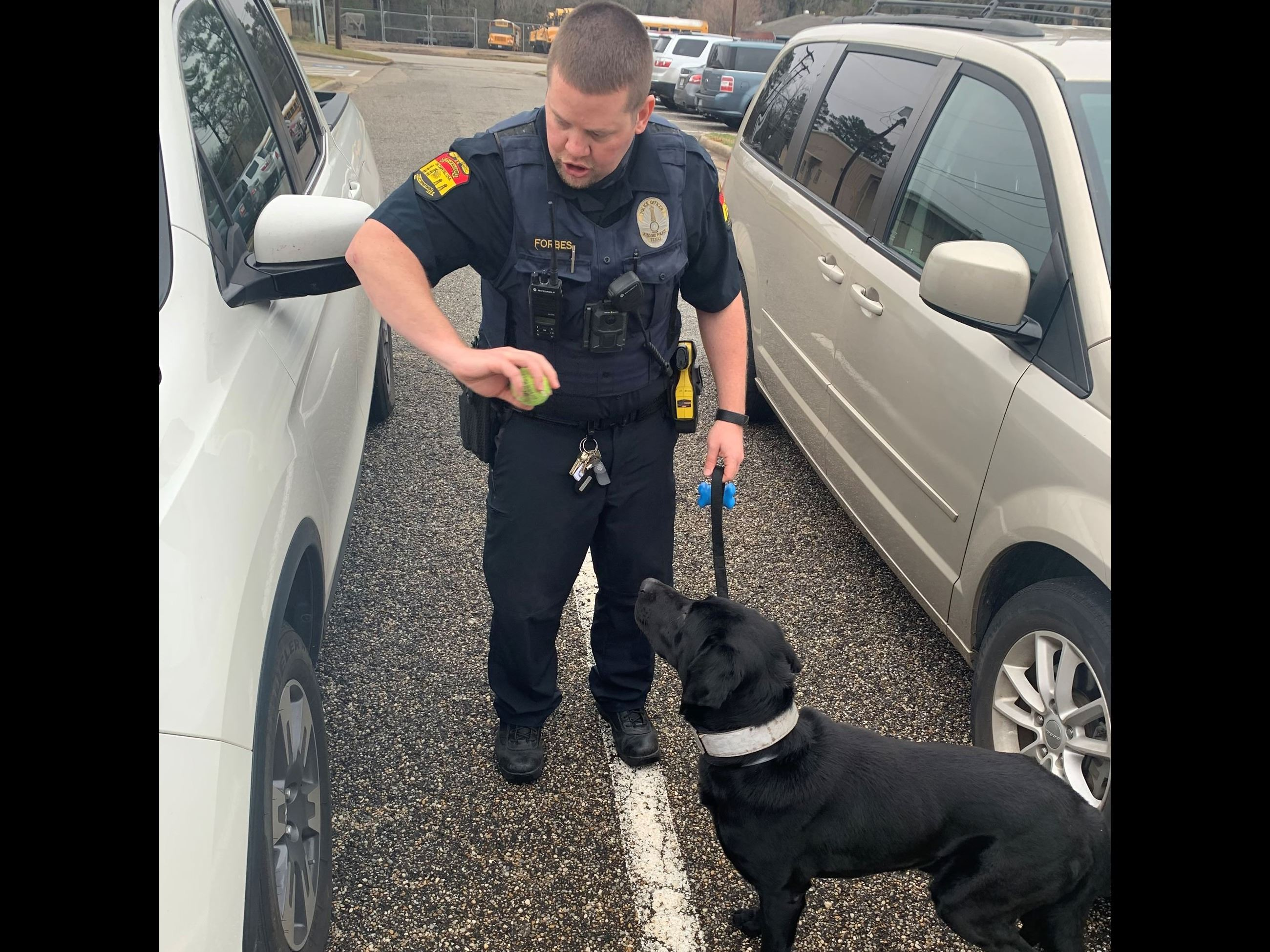 Officer Forbes and K9 Ruger vehicle sniff